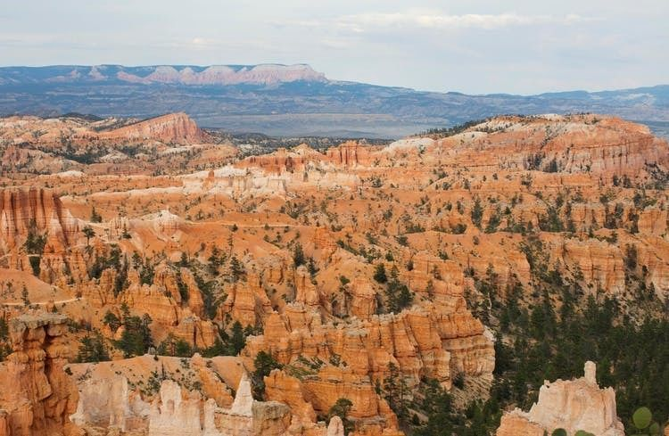 Western Deserts 3-day tour