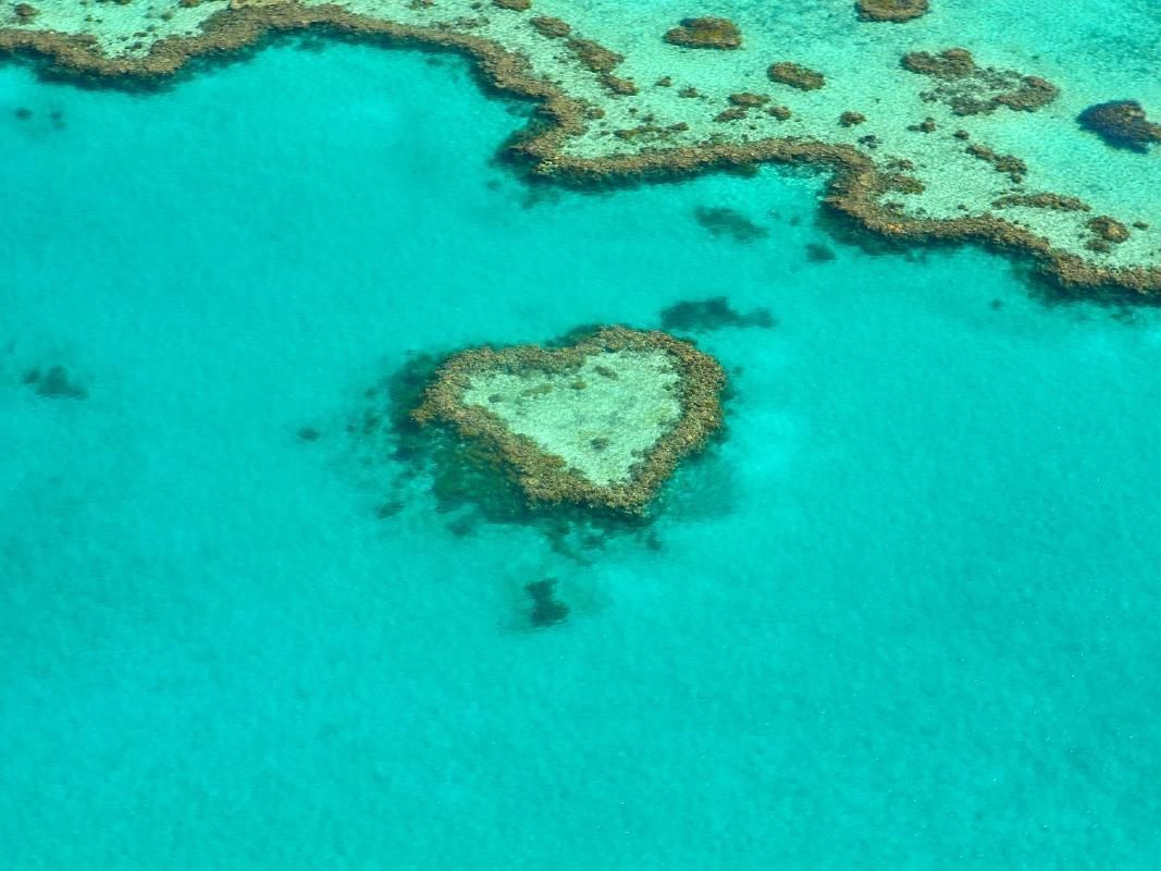 Great Barrier Reef Scenic Flight from Cairns with Hotel Transfers