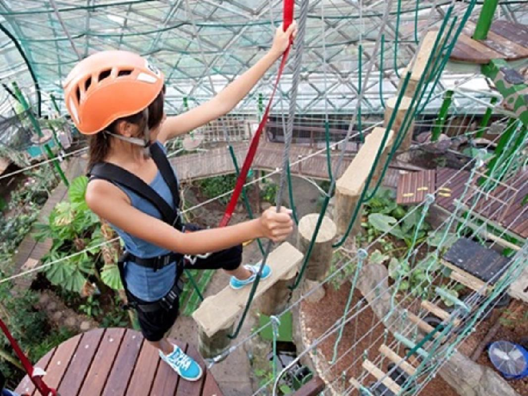 Cairns ZOOM & Wildlife Dome Entry Ticket and Ropes Course