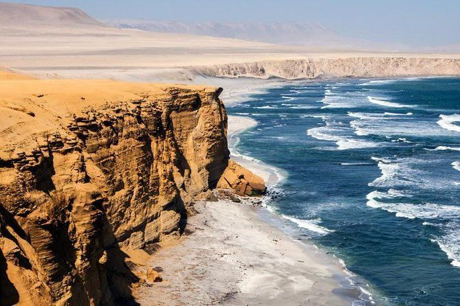 Half day Tour to the Paracas National Reserve from Puerto San Martín