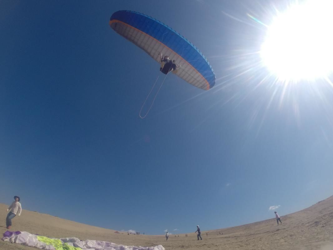 Half-Day Paragliding Adventure over the Sand Dunes of Tottori