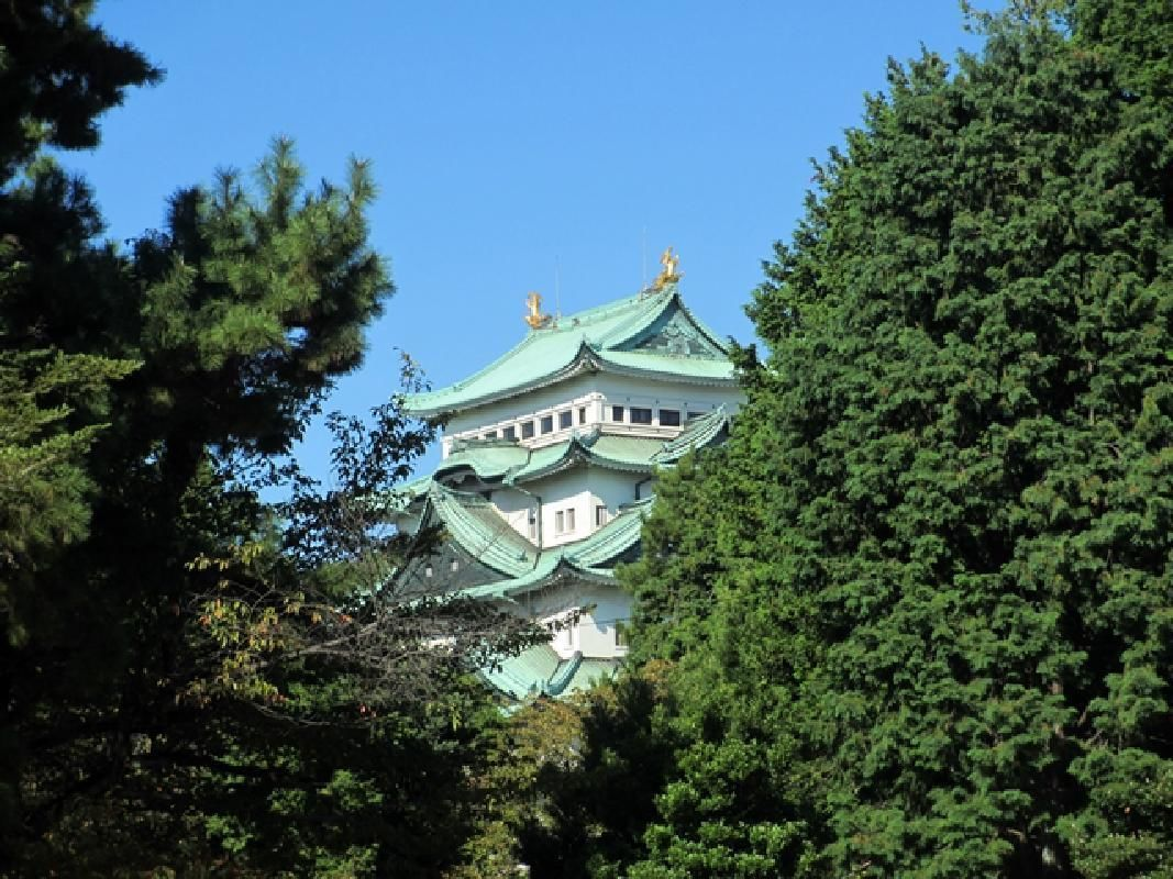 Private Chartered Half Day Sightseeing Taxi Tour in Nagoya