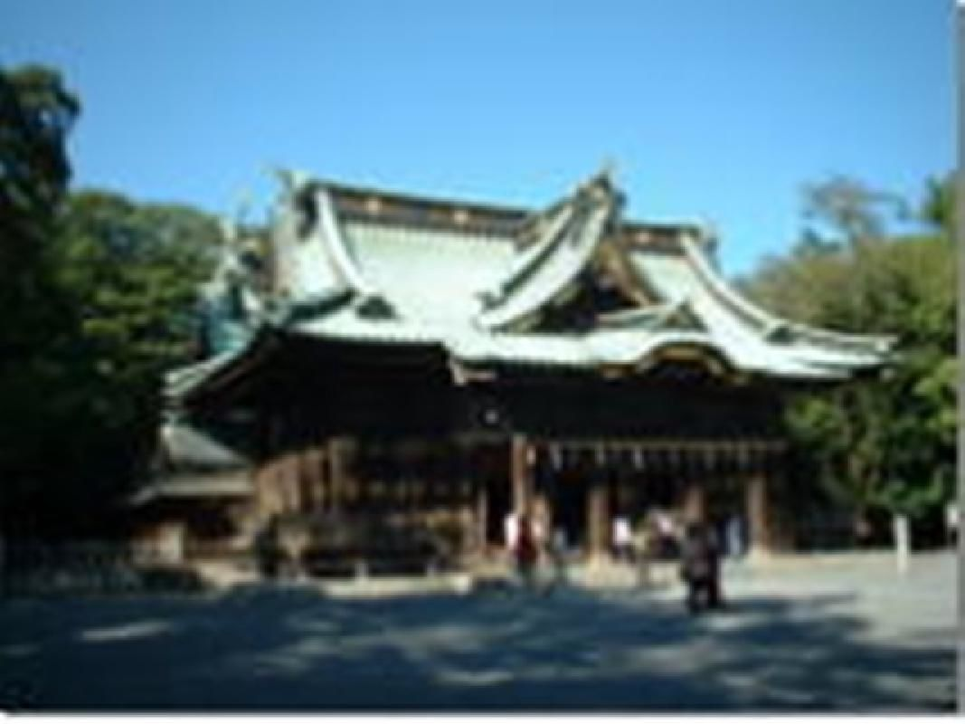 Half Day Mishima Shrine and Orchid Park Chartered Tour from Mishima City