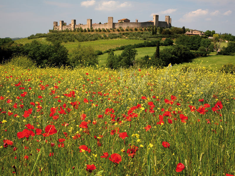 Chianti and Siena Day Tour with Tuscan Winery Dinner
