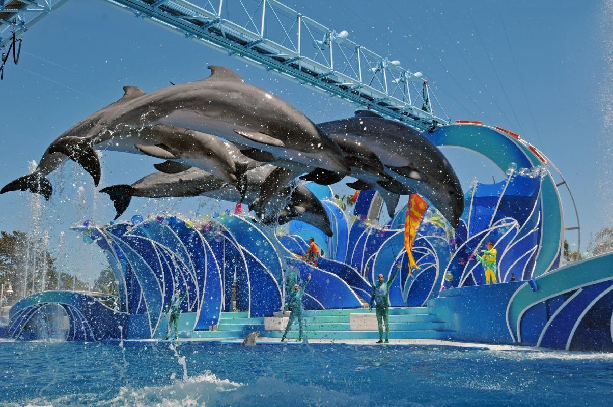 SeaWorld San Diego Tickets & Transportation