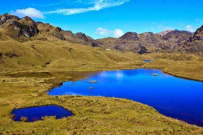 Shared Cajas National Park Half-Day Tour from Cuenca