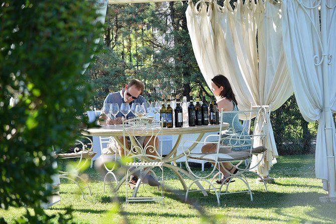 Wine Tasting, San Gimignano and Pisa Private Tour from Forte Dei Marmi