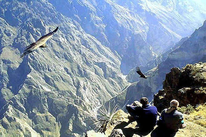 Tour Colca Full Day Promotional Price