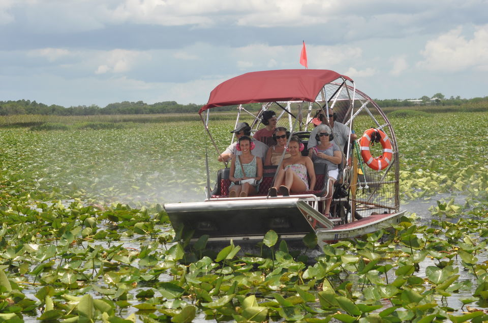 Kissimmee: 1-Hour Airboat Everglades Adventure Tour