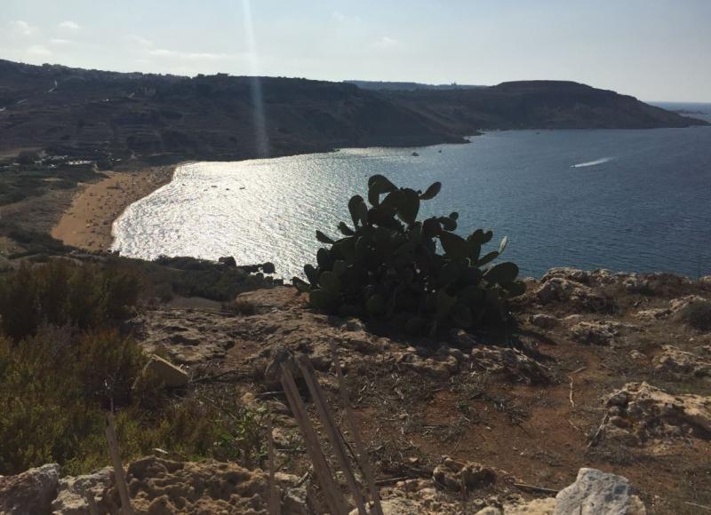 Excursion Gozo
