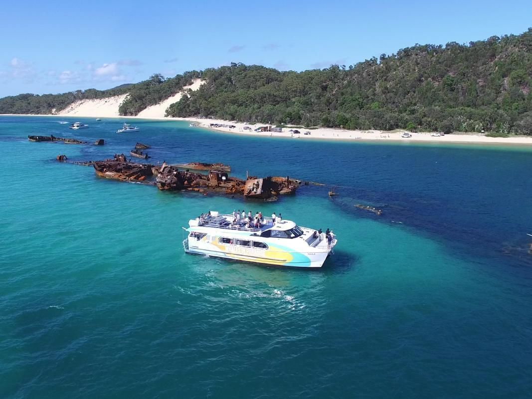 Dolphin Sightseeing Cruise with Tangalooma Wreck Snorkeling Experience