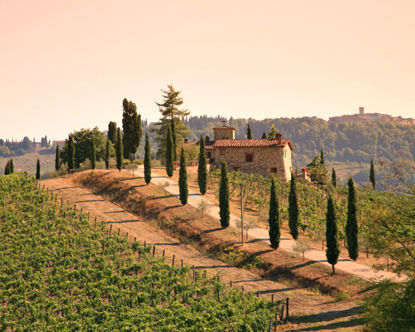 Private 4-Hour Chianti Tour and Wine Tasting