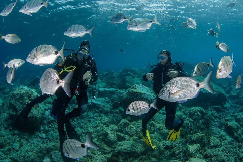 Gran Canaria: Discover Scuba Diving Beginner Program