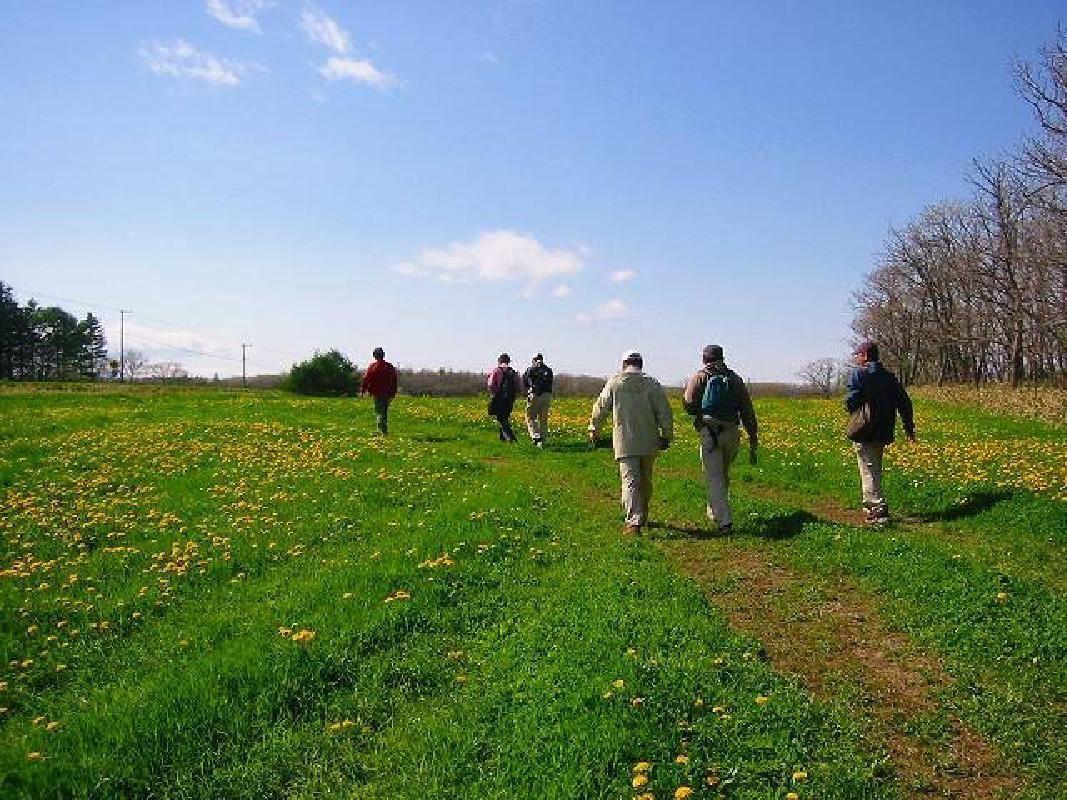 Nature Foot Path Walking Tour in Nemuro