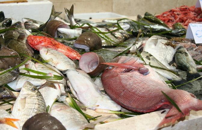Culinary tour Cagliari - Fish market San Benedetto