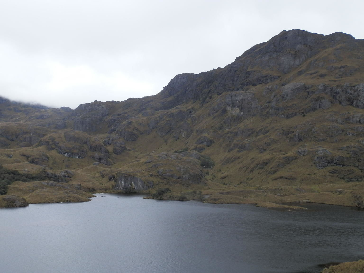 Full Day Tour to National Park of Cajas