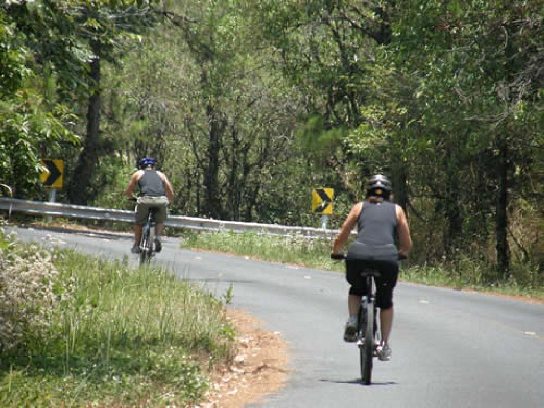 Doi Inthanon Mountain Bike Tour from Chiang Mai