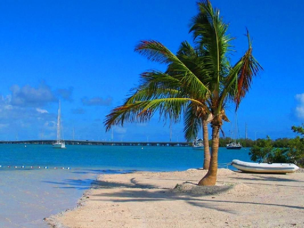Key West Full Day and Hop-On Hop-Off Trolley Guided Tour from Fort Lauderdale