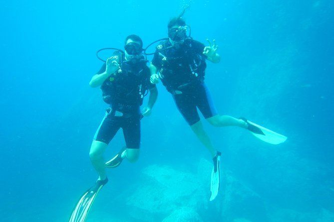 Never dived before - try diving with the ScubaDawgs