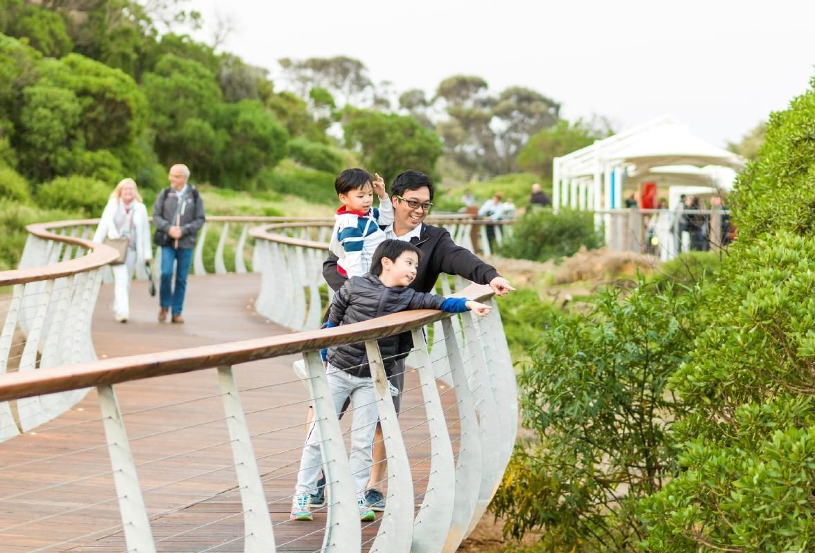 Penguin Parade and Phillip Island Wildlife Afternoon Tour from Melbourne