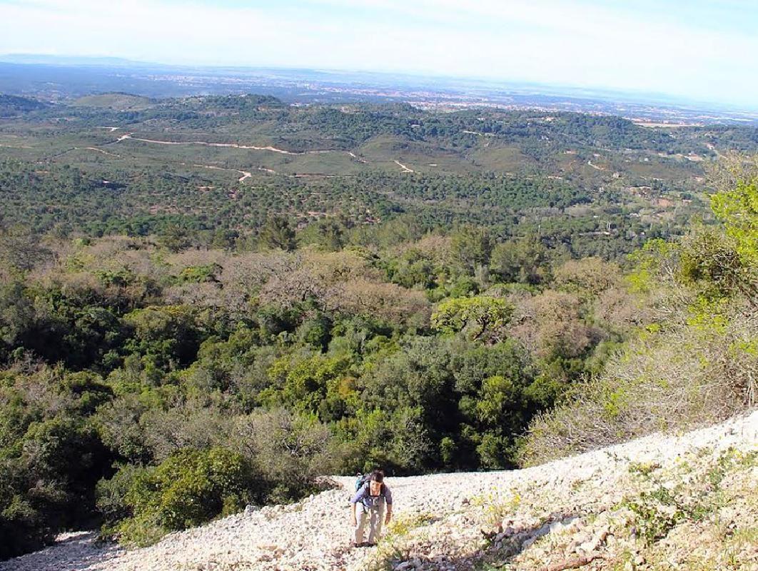 Serra da Arrábida Full Day Hiking Adventure from Lisbon with Lunch