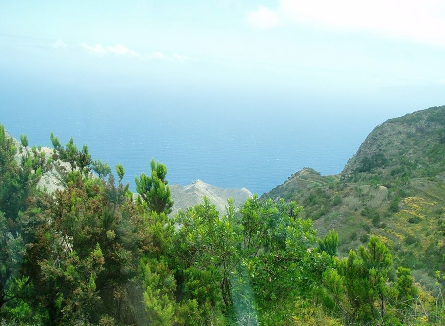 From Tenerife: Full-Day Tour of La Gomera