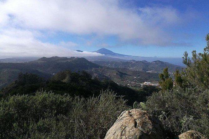 Teide Volcano & Unesco Experience