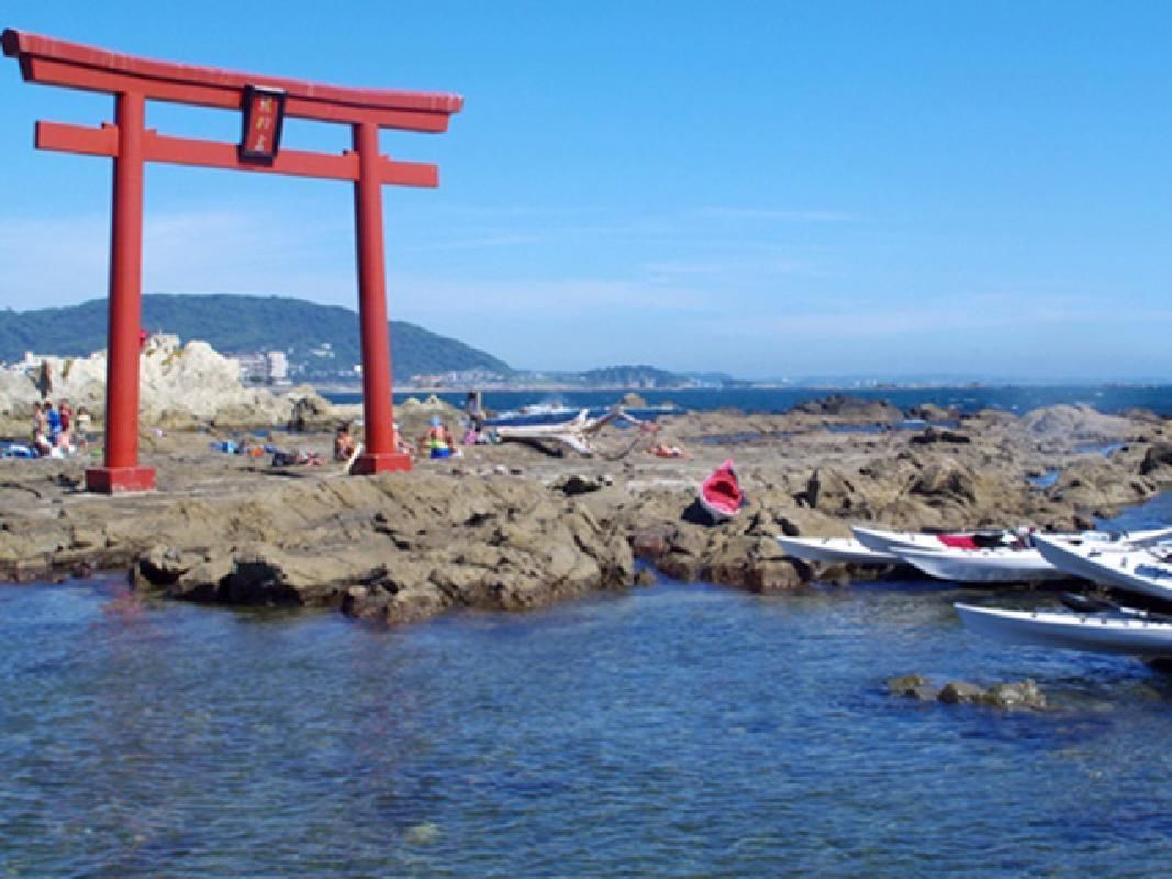 Half Day Sea Kayak Lesson and Island Tour from Zushi