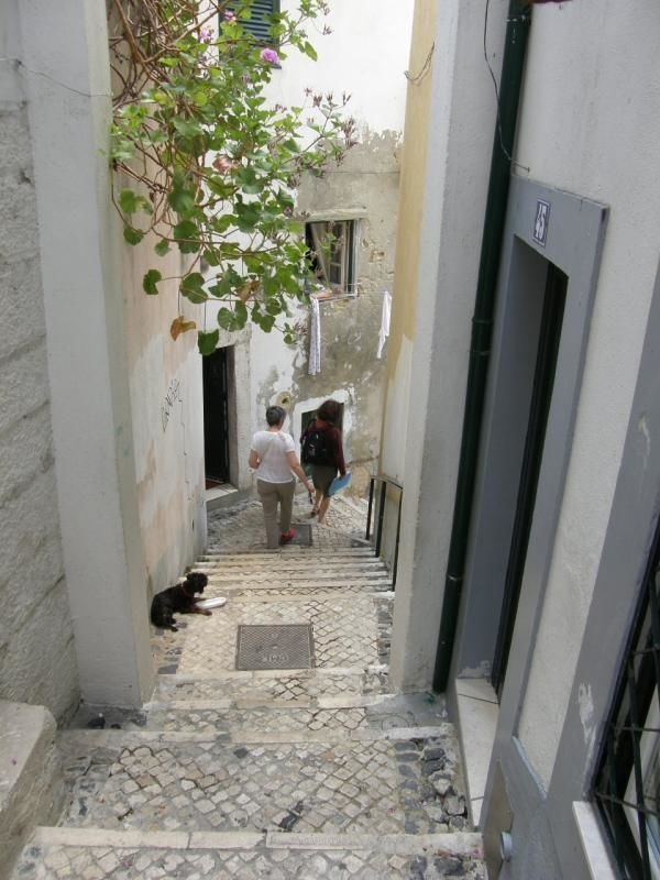 Tour of Lisbon: Alfama and the Castle of St. George