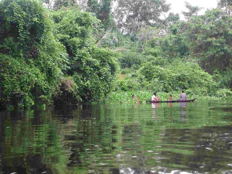 Two-day excursion to the Orinoco Delta with overnight stay
