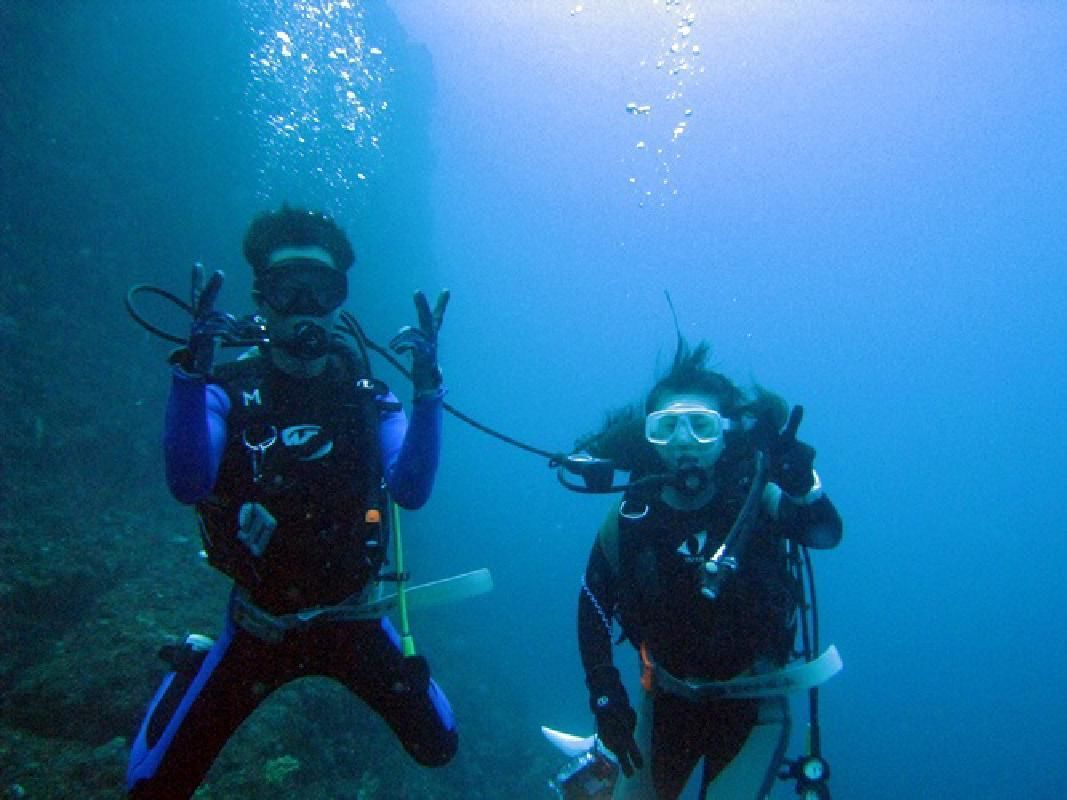 Fun Diving for Licensed Divers at the Southernmost Point of the Izu Peninsula